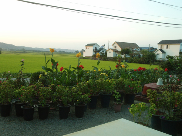 집앞 풍경