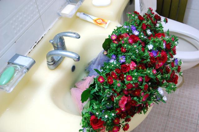 욕실에서 샤워중인 꽃