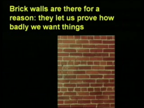 Brick walls are there for a reason: they let us prove how badly we want things.