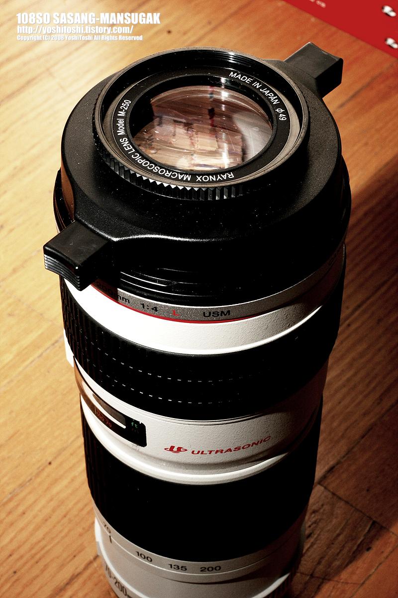 Raynox DCR-250 + Canon EF70-200mm f/4L USM