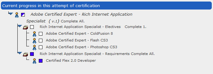 Rich Internet Application Specialist